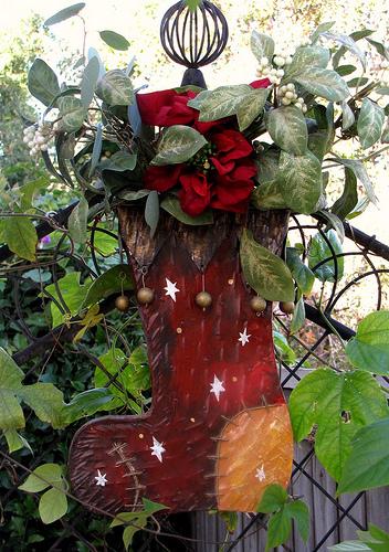 Garden Stocking