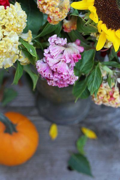 Abundent blooms by Kay Ellen