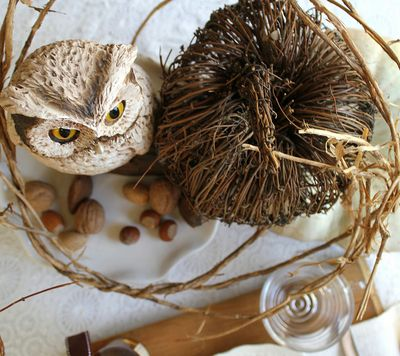 Owl & Nature KayEllen