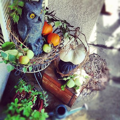 Kay Ellen's Spooky Cute Porch