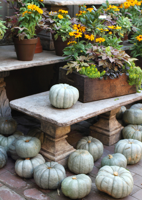 Crates and pumpknis