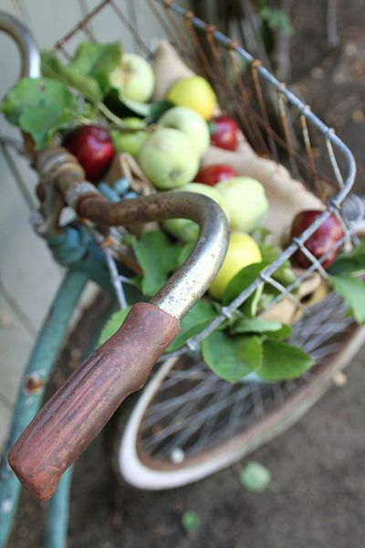 Bike & Apples