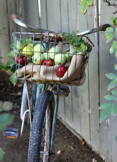 Apple Biking