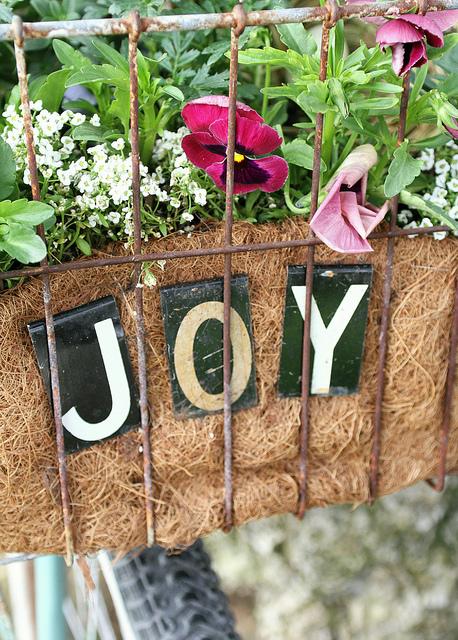 Blooms of joy